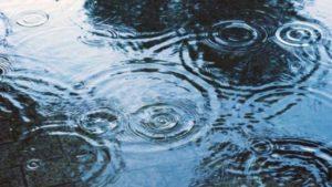 水たまりの雨の波紋