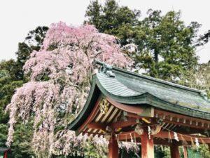塩竈神社y